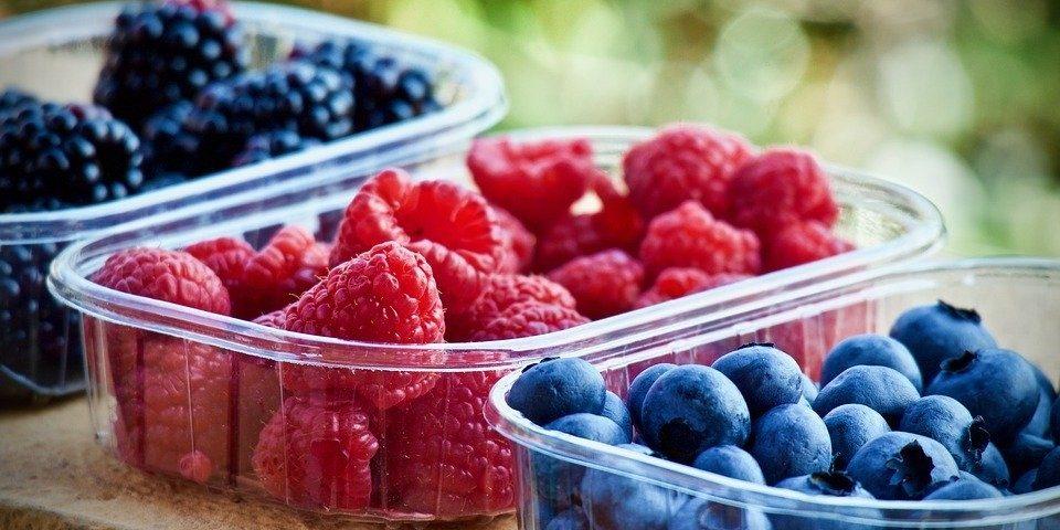 Aprender a armazenar frutas e legumes ajuda a evitar desperdícios