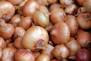 Comprar hortaliças em São Paulo requer cuidado e atenção aos detalhes